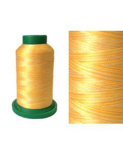 ISACORD 40 Multicolour - (9925) 1000mt